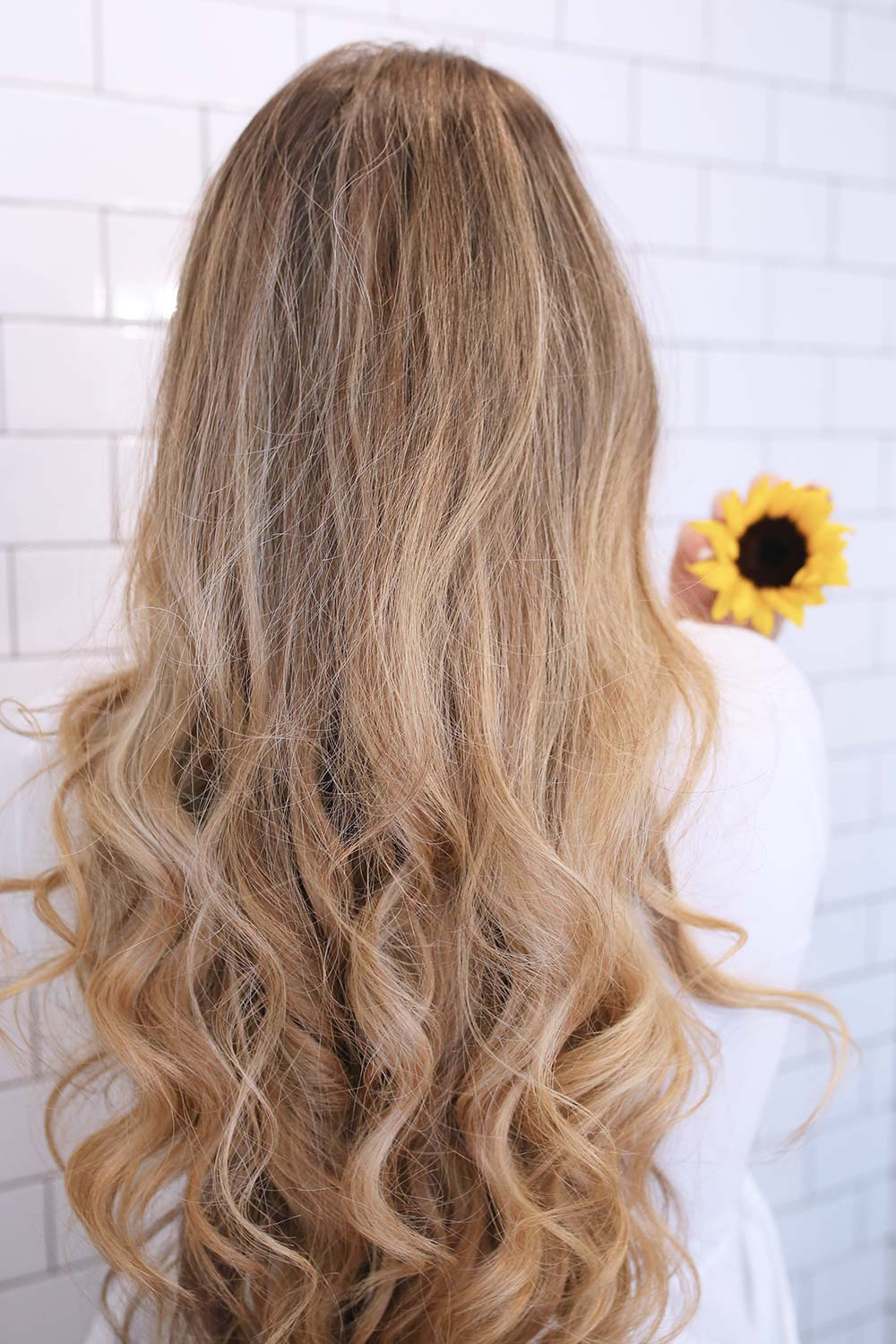 Shampoo and conditioner for dry hair--Hair Food Moisture Shampoo and Conditioner